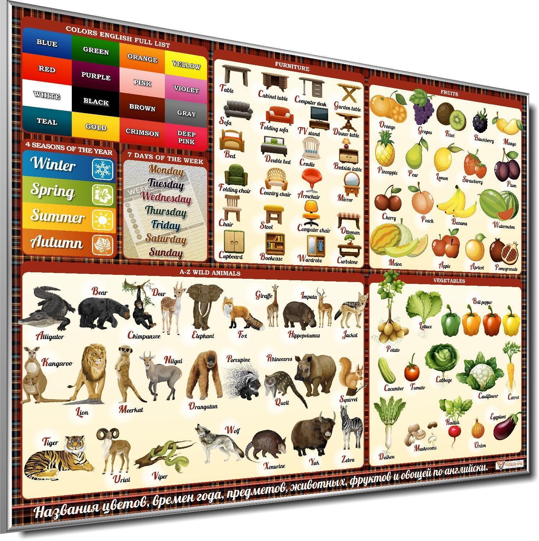 Стенд «Цвета, времена года, животные, еда, предметы ...