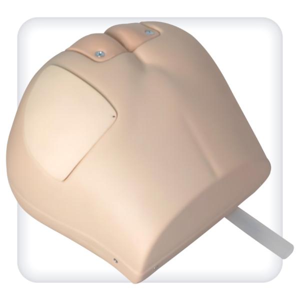 Тренажёр таза для постановки клизмы, внутримышечных инъекций, обработки стом