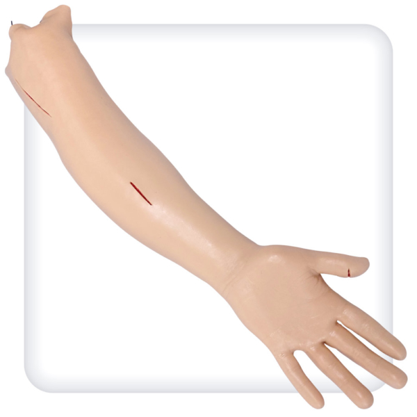 Модель руки для наложения швов