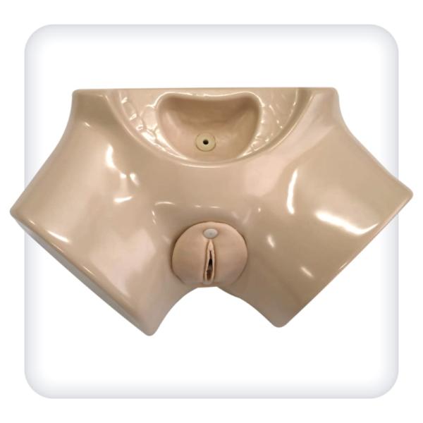 Тренажер женской промежности для катетеризации мочевого пузыря