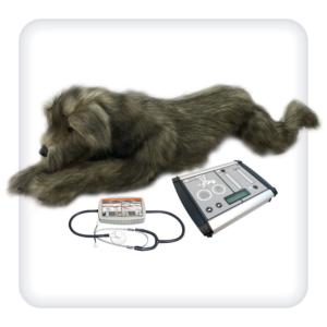 Тренажер для отработки навыков СЛР и дренирования плевральной полости у собак