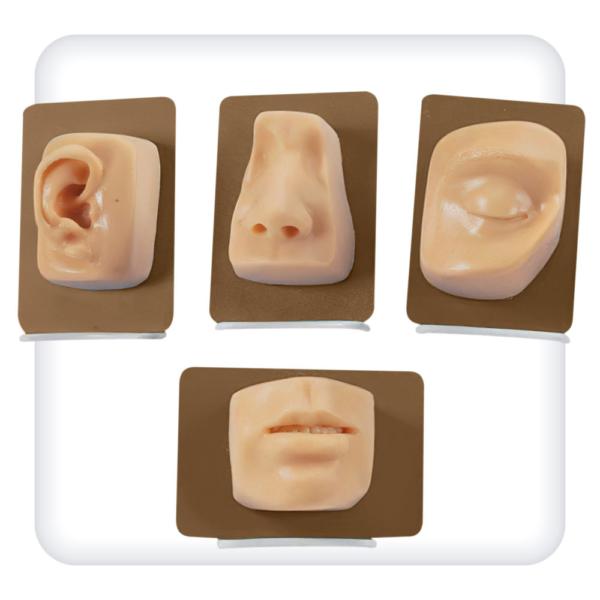 Модели для наложения швов в челюстно-лицевой хирургии