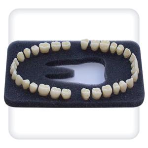 Комплект из 32 модельных зубов З-32O