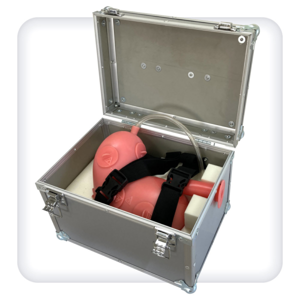 Тренажер для отработки навыков эндоскопической подслизистой диссекции желудка